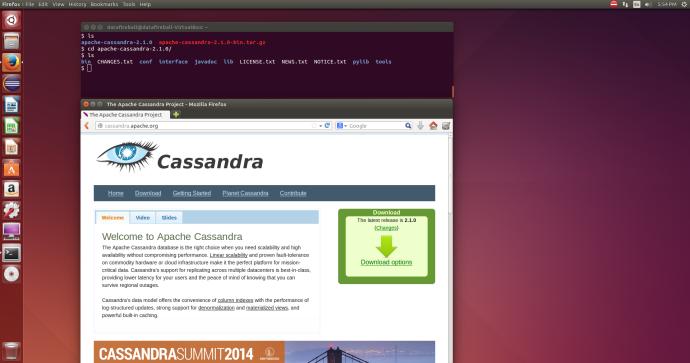 cassandra_download